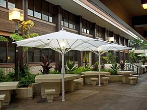 parasol professionnel nos photos terrasse. Black Bedroom Furniture Sets. Home Design Ideas