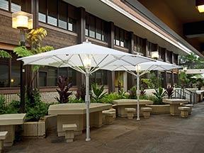 Parasols sur terrasse
